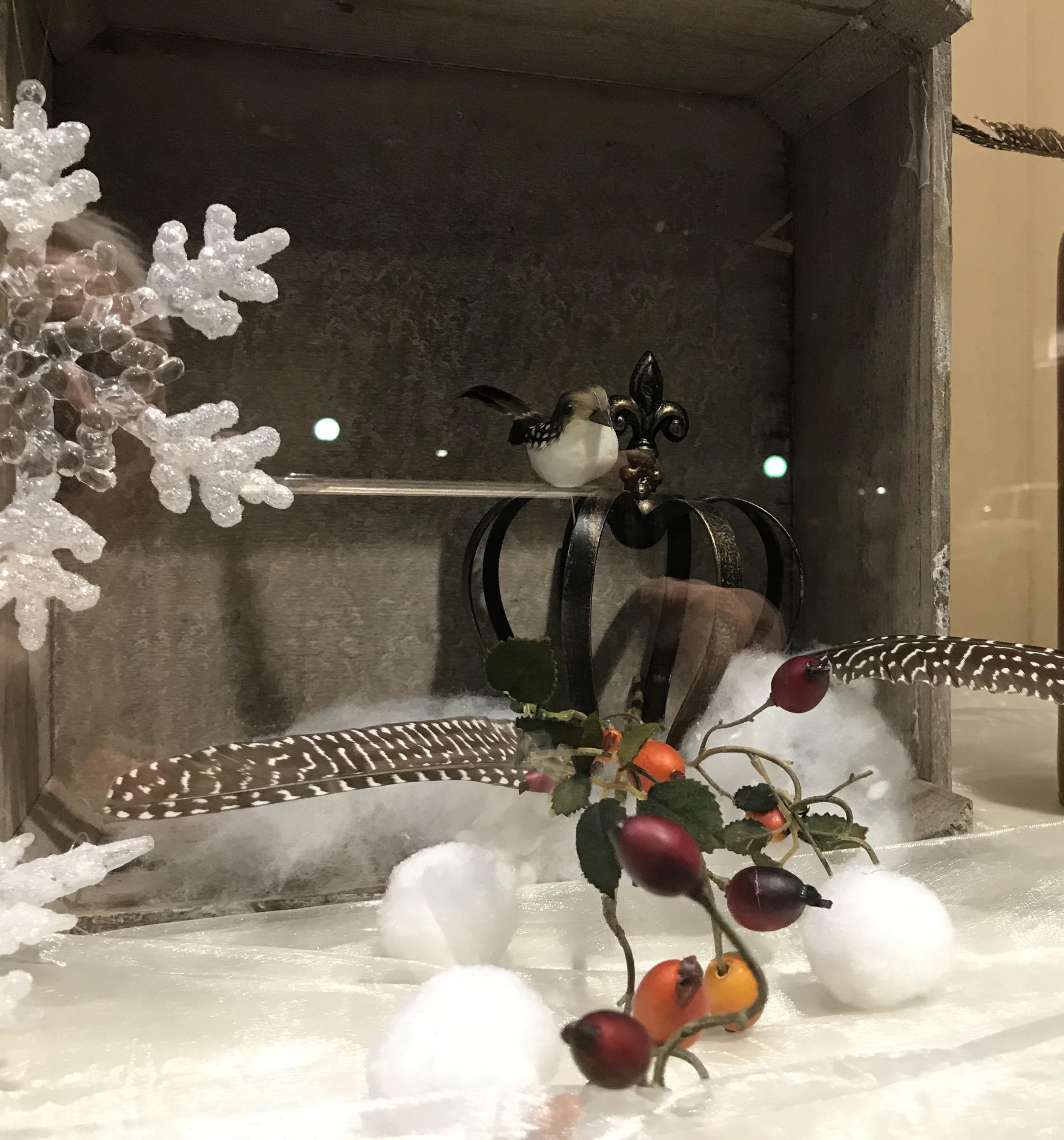 Winter Vogel