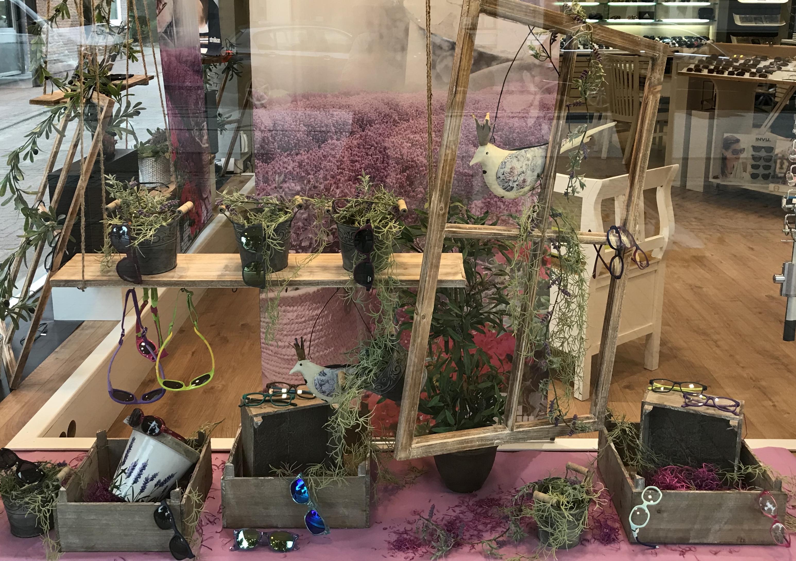 Lavendel uns Oliven
